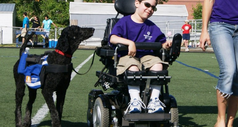 Mobility Service Dogs