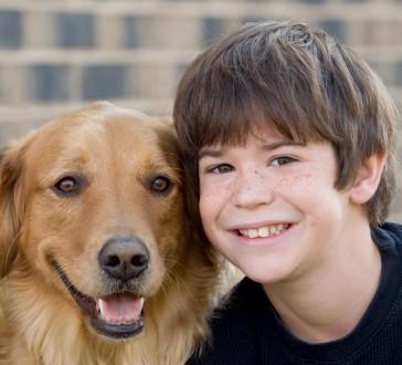 Seizure Alert Dogs