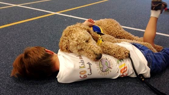 service dogs for children
