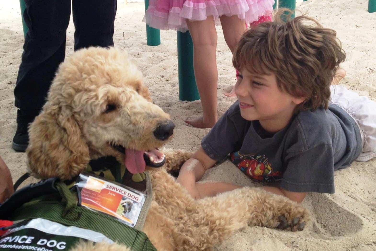 Autism Assistance Dog Training