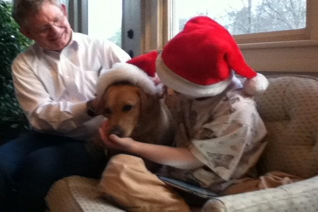 <h2>Charlie &#8211; Labrador Retriever</h2>