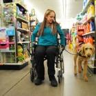 The Importance of Mobility Service Dogs