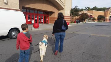 Autism Service Dog tethering with child