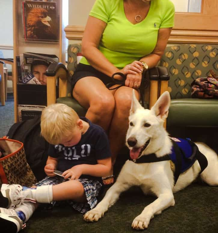 Service dog with child and family