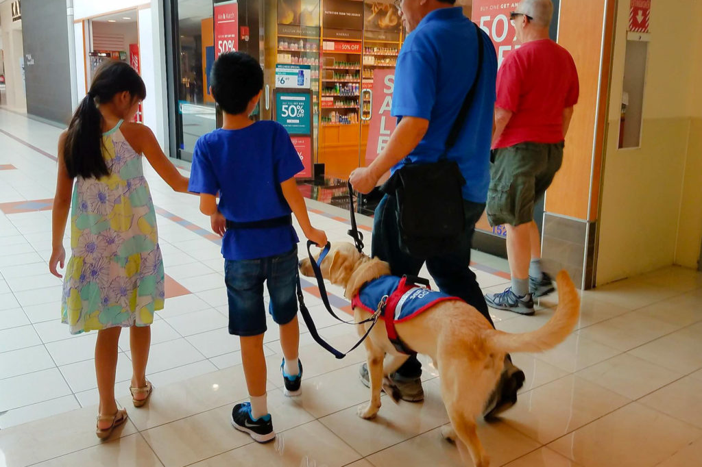 Service Dog for Autism keeping child close by tethering