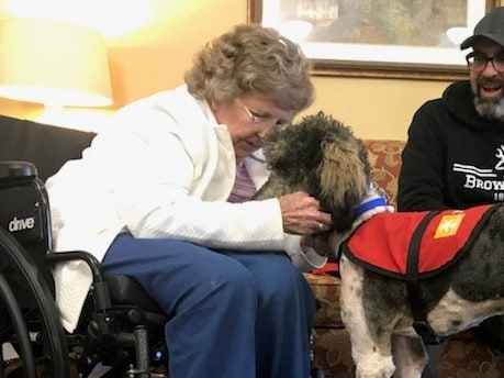 therapy dog assisted living