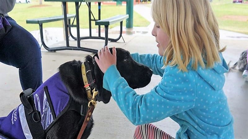 Service dog for autism redirecting child