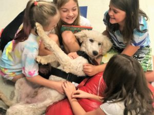 Poodle puppy receives affection during reading program