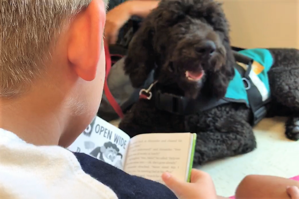 Service dog in training reading program