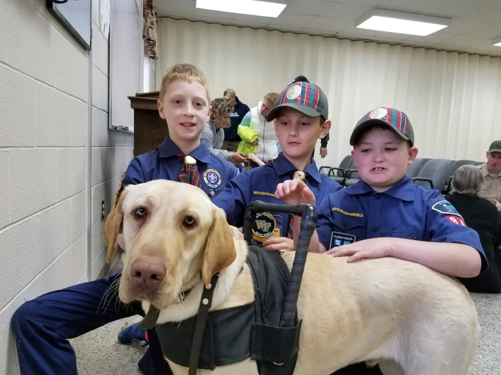 service dog with boy scout children