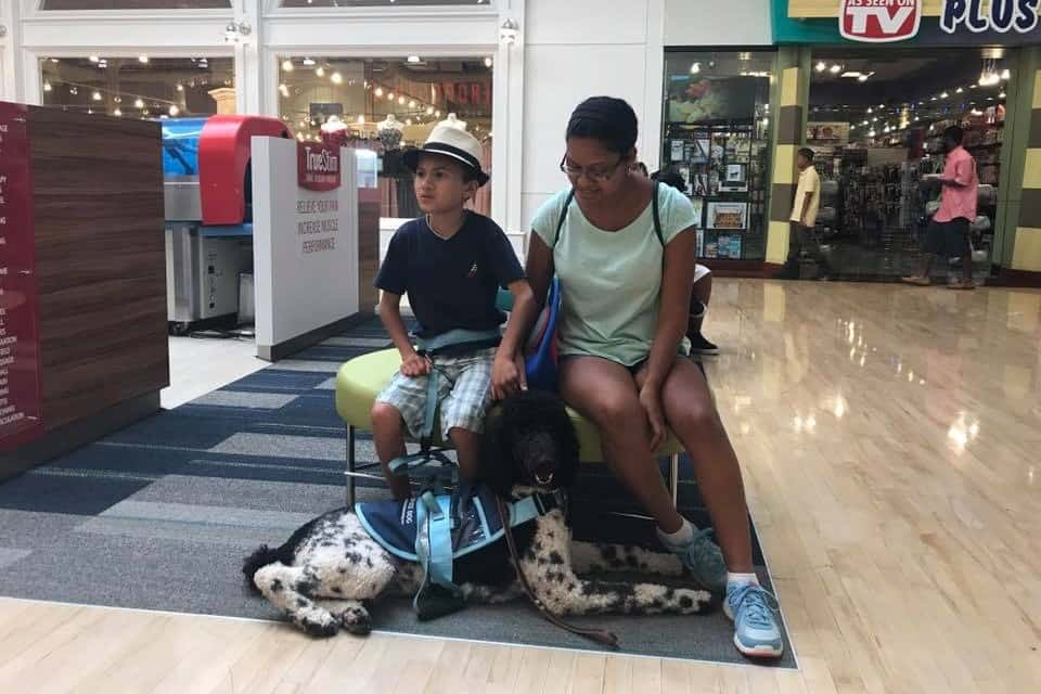 Autism Assistance Dog with Child