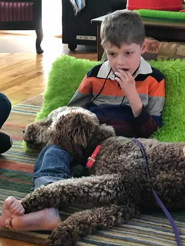Seizure Alert Service Dog with boy