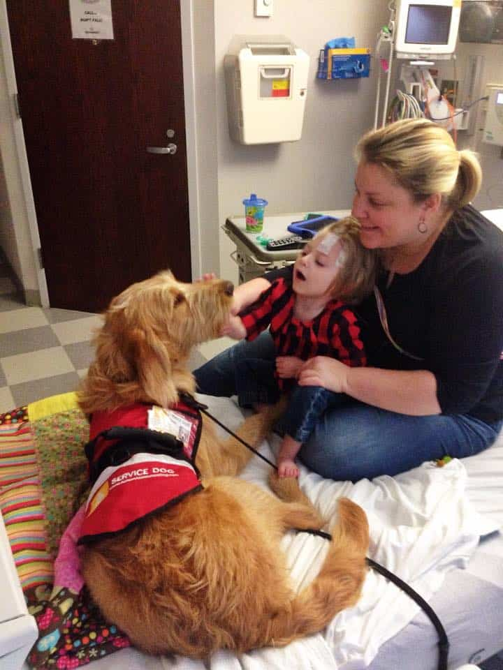 Child with seizure disorder petting service dog