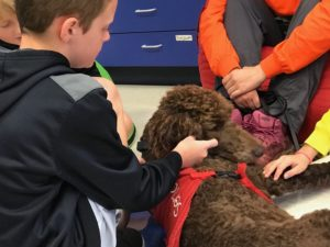 Service dog providing therapy