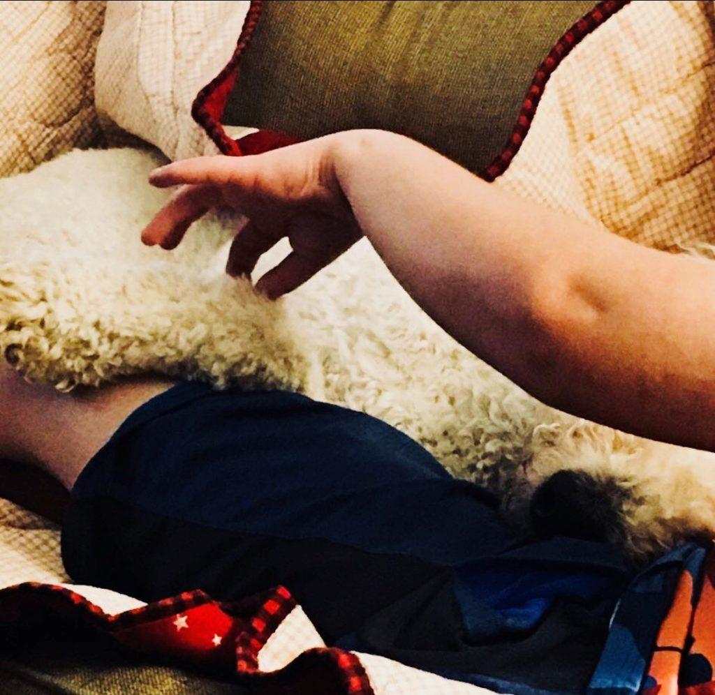 Sensory Relief Service Dog for Autism
