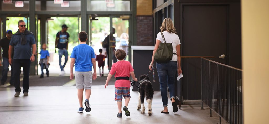 Service Dog in public outing with child