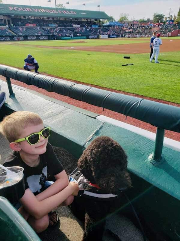 Public Access Autism Service Dog at ball game