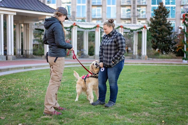 Trained task requirements of service dogs