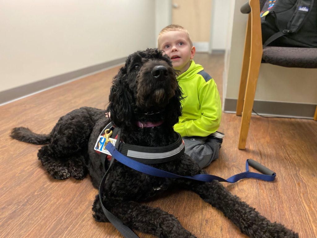 Top Facts to Know about Autism Service Dogs