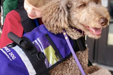 zoey service dog and mason