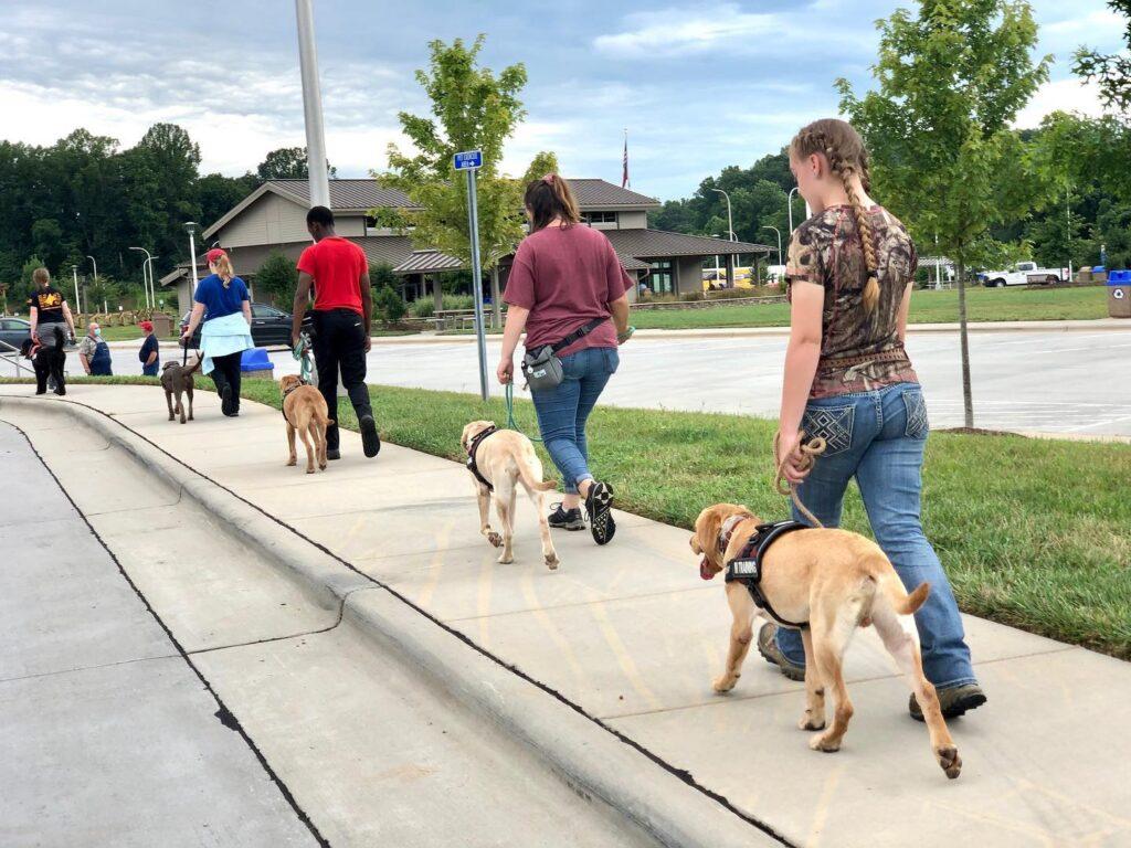 service dog trainers walking on sidewalk
