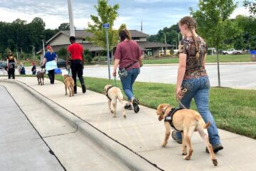 service dog trainers walking on sidewalk