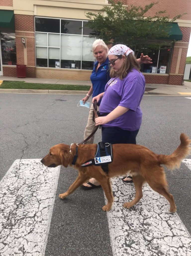 service dog delivery