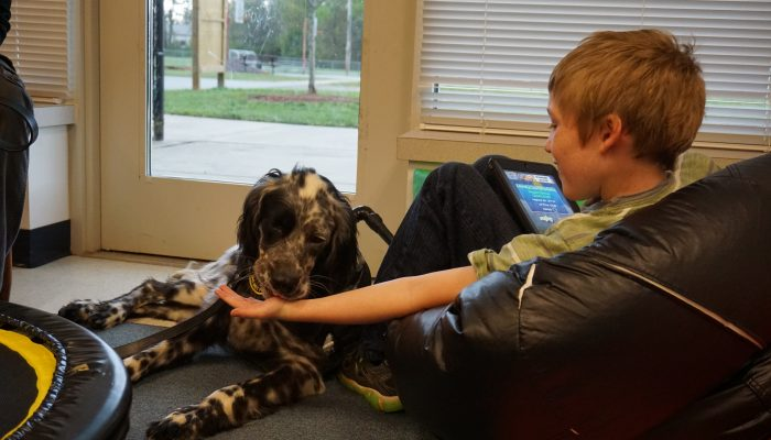 Service dog in school classroom