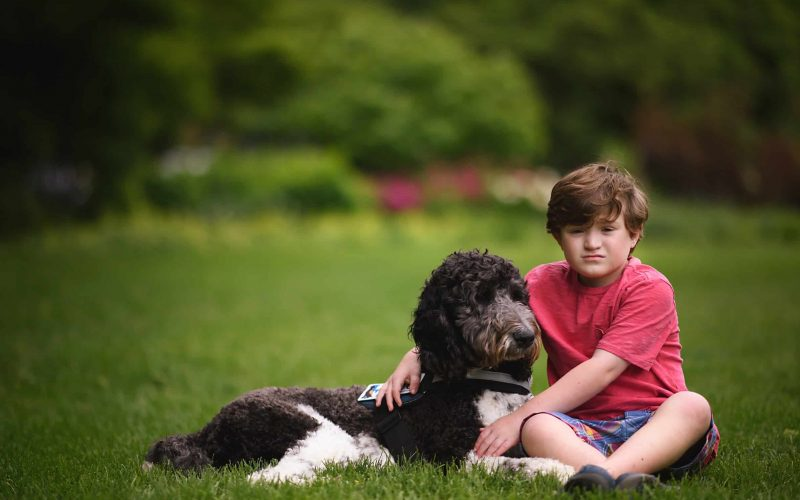 Autism Service Dog with young boy