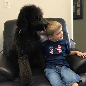 Autism Assistance Dog interacting with child