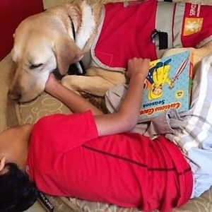 benefits of autism service dog for child